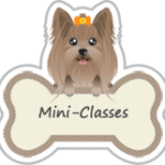 mini-classes