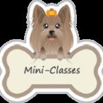 mini-classes